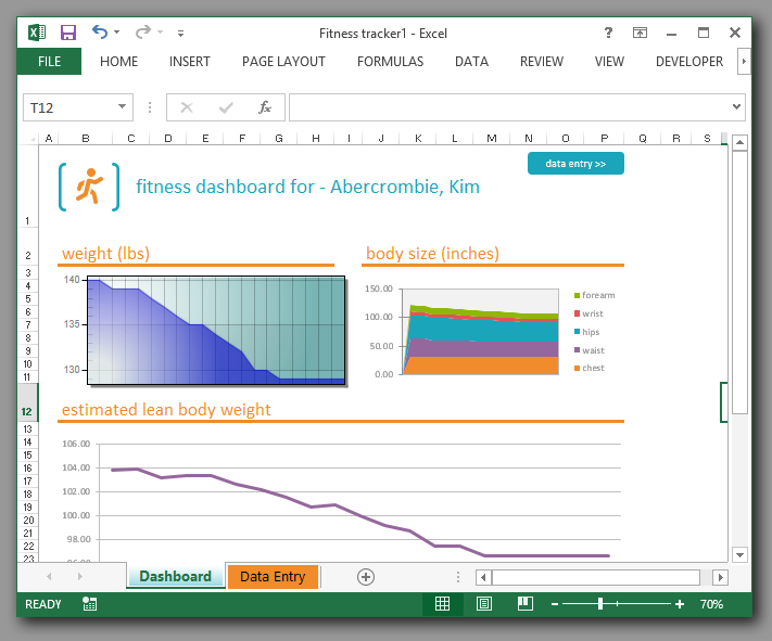 Excel charting activex example with vb code to read cells activex charting inside ms excel ccuart Gallery